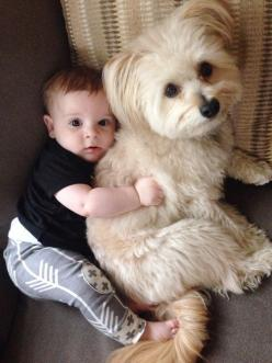 ♥: Babies, Animals, Dogs, Friends, Adorable, Puppy, Baby, Kids