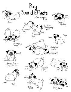 Bah Humpug: Pug Action- exactly Callie, or half...or a quarter, maybe more depending on what breed my dog actually is....: Animals, Pug Life, Pet, So True, Pugs, Dog, Bah Humpug, Pug Actions