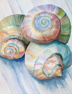 Balance In Spirals Watercolor Painting Painting by Michelle Wiarda - Balance In Spirals Watercolor Painting Fine Art Prints and Posters for Sale: Watercolor Painting, Michelle Wiarda, Art Watercolor, Art Prints, Seashell Painting, Water Color, Spirals Wat