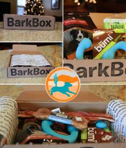 #BarkBox Cool stuff for the dogs delivered right to your door!: Boxing Ideas, Chyna Puppy, Doggie Parenting, Make Up Barkbox, Grooming Petsitting, Puppy Hurr 3, Pets 33, Dogs Delivered