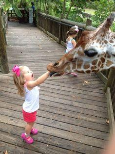 Because kids want to stick their hands in everything, which is never a good idea.   23 Reasons Why Kids And Animals Should Never Mix  - ow!