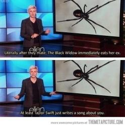 Black Widows… Oh my Lord this took me about 10 minutes to realize what it meant. Hahaha fail XD: Black Widow, Taylor Swift, Taylorswift, Giggle, Against, Funny Stuff, Funnies, Humor