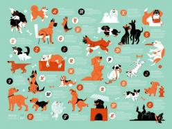 Dogs Alphabet: Lydia Nichols, Dogs Alphabet, Alphabet Posters, Infographic, Products