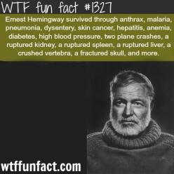 ernest hemingway - people facts  MORE OF WTF FACTS are coming HERE  people/celebs, movies  and fun facts: Useless Facts, Wtf Facts, Wtffacts, Wtf Fun Facts, Ernest Hemingway, Weird Facts, Poor Guy, Funfacts, Random Facts