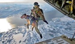 Fourlegged heroes. #flydogs #military #dogs: Cat, Dogs, Best Friends, Hero, Mans Best Friend, Animal, Military