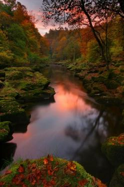 Gorgeous Autumn Color By a Stream: Bolton Abbey, Nature, Beautiful Places, Fall, Yorkshire Dales, Beauty, Photo