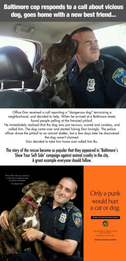 Great story: Cop Saves, Humanity Restored, Best Friends, Pitbull, Pit Bull, Faith In Humanity, Dog, Animal, Baltimore Cop
