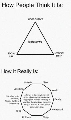 How People Think It Is Vs. How It Really Is: College Truths, Funny Relateable Quotes, Laughing Quotes, Funny True Quotes, Funny Truths, Funny College Quotes, Funny Relatable Quotes, College Quotes Funny, College Funny Quotes Truths