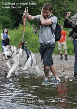 https://www.facebook.com/VozapalavradeDeus7000             Submitted by: Unknown        (via Pleated Jeans)                Tagged:   water ,  swimming ,  scared ,  funny   Share on Facebook: Animals, Scared Husky, Dogs, Funny Pictures, Funny Animal, Moon