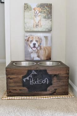 Hudson's House: Personalized Pet Food Area. elevated dog bowls. diy pet food bowls. To put in my mud room!: Dog Idea, Puppy Picture, Dog Diy Project, Mud Room, Puppy Idea