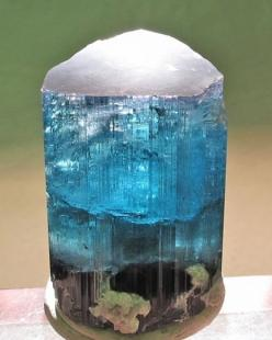 Indicolite Tourmaline w/ Lepidolite beautiful.... crystalized ocean / Mineral Friends <3: Gems Rocks Minerals Crystals, Indicolite Tourmalinefriends, Crystals Minerals, Lepidolite Beautiful, Mineral Friends, Lepidolite Excellent, Gemstones Minerals Tou