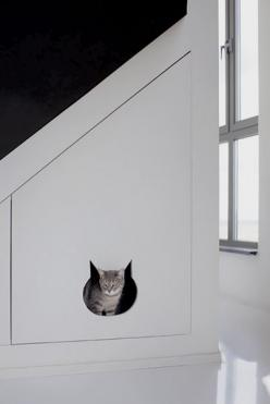 kitty litter room? could do this to that little closet I have in their room. Cut it in half so part is litter room and top is something else for them. Ventilation out the top side maybe.: Cats, Interior, Idea, Pet, Litter Box, Cat House, Water Tower, Anim