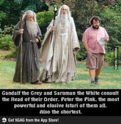 Lord of the rings/the hobbit humour.: Lotr, Peter Jackson, Peter O'Toole, Middleearth, Movie, Wizard, Middle Earth, Hobbit, Lord Of The Rings