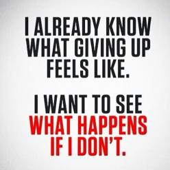 Mind building Muscle, there will always be a few speed bumps in a training program but never give up!!!!!!!: Fitness Motivation Quote, Don'T Give Up, Quotes, Weight Loss, Fitness Inspiration Quote, Don T, Never Give Up, Workout Quote
