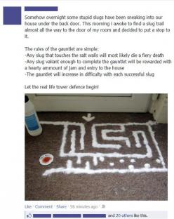Oh man. I almost want some slugs to try to get into my home now, just so I can try this!: Slug Maze, Giggle, Awesome, Funny Stuff, Funnies, Humor, Things, Slug Gauntlet