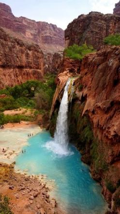 One of the many waterfalls you'll find in the grand canyon - have been and it is stunning!: Bucket List, Beautiful Waterfalls, Waterfalls In Usa, Havasupai Waterfalls, Waterfalls In The Usa, Waterfalls You Ll, Havasu Falls, Havasupai Tribe, Grand Cany