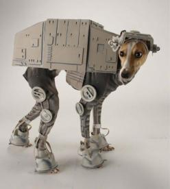 Plenty of people have dressed their dogs in Star Wars costumes, but this little guy dressed as an AT-AT Walker from Empire really nailed it.: Dogs, Both, Halloween Costumes, Pet, Star Wars, Dog Costumes, Animal, Starwars