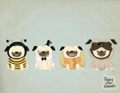Put a Pug in a Pug 85x11 Free Shipping to US by eelhips on Etsy, $15.00: Dogs, Pug Life, Pugs Pugs Pugs, Things, Animals Of, Chacha ️ Pugs
