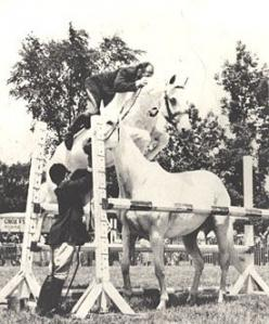 Snowman, a plow horse who was rescued from an auction for 80 dollars,  went on to become a famous showjumper, and was eventually inducted into the showjumping hall of fame!: Dollar Champion, Famous Horses, Showjumping Hall, Famous Showjumper, Plow Horse,