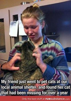 The feels: Cats, Animals, Girl, Sweet, Stuff, Shelters, Pets, Things, Animal Shelter
