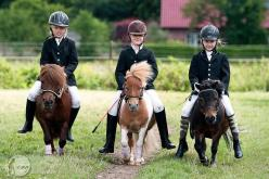 The three horsemen.  Adorable!: Equine, Horses, Ponies, Three Horsemen, Horse Photography, Kids, Mini, Equestrian, Animal