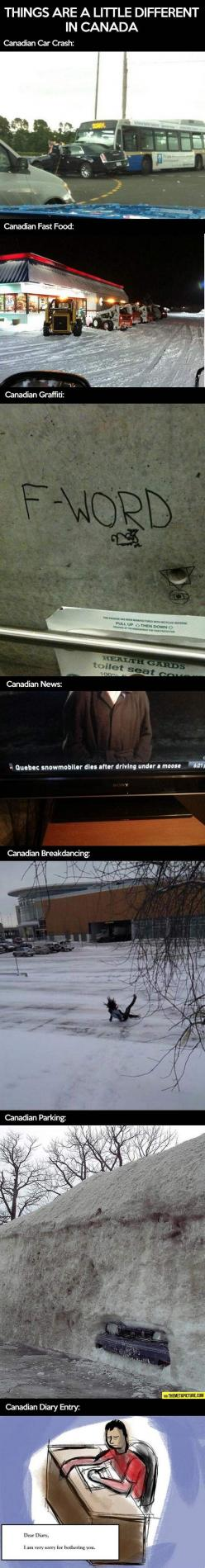 Things are somehow different in Canada…: Giggle, Canada, Canadian Stereotypes, Canadian Friends, Funny Stuff, Things, It S Funny, Canadian Thing