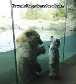 Unbearably Cute  // funny pictures - funny photos - funny images - funny pics - funny quotes - #lol #humor #funnypictures: Picture, Animals, Polar Bears, Funny, Polarbear, Photo, Kid