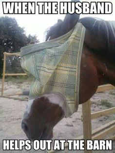 What it looks like when husbands help out at the barn :) #husband #helping #horses #fly #mask #funny #meme #TheCre8iveChick