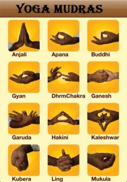 Yoga Mudras!  Come to Clarkston Hot Yoga in Clarkston, MI for all of your Yoga and fitness needs!  Feel free to call (248) 620-7101 or visit our website www.clarkstonhotyoga.com for more information about the classes we offer!: Mudras Meaning, Yogi, Yoga
