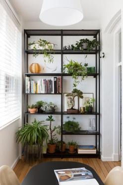 1915 Apartment Gets A Mid-Century Modern Update: Interior, Book Shelf, Iron Shelf, Shelf Plant, Apartment, Indoor Plant Stand