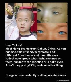 ... amazing - he can see perfectly well in the dark and his eyes change from blue to Neon Green when light is shined on them... are we evolving...: Green Eyes Facts, Dark Blue Eyes, Wtf Facts, Blue Eyes Facts, Neon Green, Eyes Change, Fun Facts, Green Eye