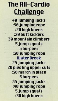 An all-cardio workout challenge! If you need more water breaks, go ahead. Its important to stay hydrated.: Cardio Workouts, All Cardio, Health Workout, Workout Challenge, Work Outs, Exercise, Fitness Workout