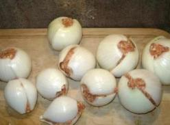 Campfire onion bombs, stuff an onion with ground meat and seasonings. Roll in foil, toss in fire for 10 min, roll around then cook 10 min more.: Onions, Camping Foods, Camping Recipe, Onionbombs, Bombs Camping, Campfire, Camping Ideas