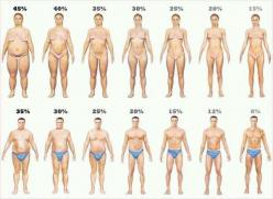 Check your body fat percentage online - Body fat percentage calculator for women & men.: Body Fat, Bodyfat, Fat Percentage, Fitness, Weight Loss, Motivation, Healthy, Weightloss, Workout