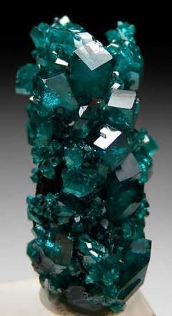 Dioptase crystals (stalactitic in form) / Tsumeb, Namibia: Gemstones Depending, Crystal, Gems Minerals, Crystals Gems, Gem Stones, Crystals Stalactitic, Gemstones Crystals, Dioptase Crystals
