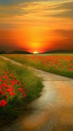 Found this pic on a group board labeled photo Shop only pictures: Sun Rise, Beautiful Sunset, Sunrise Sunset, Sunsets Sunrise, Sunrises Sunsets