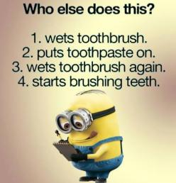 Funny Minions toothbrush,  brushing teeth. Yep,  。◕‿◕。 See my Despicable Me  Minions pins https://www.pinterest.com/search/my_pins/?q=minions: Funny Minions Quotes, Minion Quotes, Minions Despicable Me Quotes, Funny Sister Quotes, Minions Brushing, Quotes