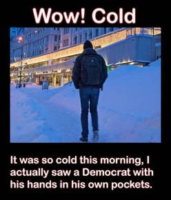 I literally laughed out loud.: Politics, Cold, Funny Stuff, Humor, Funnies, Democrat