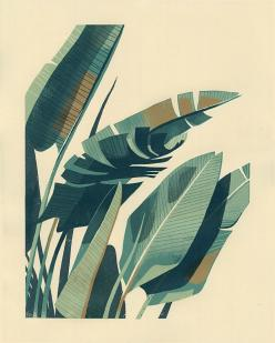 "PALM PLANT 1 - 4-color, hand-pulled screenprint - 16"" x 20"" - Edition size of 55 Prints: Palm Print, Chris Turnham, 55 Prints, Hand Pulled Screenprint"