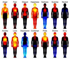 This is fascinating. Re-pin: 'Body Atlas' shows where emotions hit the hardest, shame looks like spiderman: Stuff, Maps, Feeling, The Body, Emotions, Interesting, Health, Science