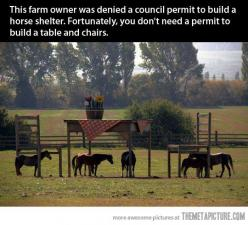 What happens when a farmer doesn't get a permit…That's awesome!: Table And Chairs, Animals, Stuff, Shelters, Horseshelter, Funny
