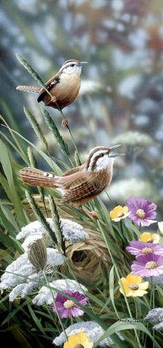 """Home Builders Wren"" (art) ~ by Bradley Jackson ~ Miks' Pics ""Fowl Feathered Friends ll"" board @ http://www.pinterest.com/msmgish/fowl-feathered-friends-ll/"