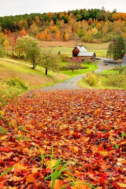 changing leaves <3: Autumn Fall, Farms, Sleepy Hollow, Children, Places, Vermont, Photo