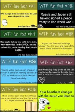 Cool facts... I already knew about the book which had 100 blank pages about what men knew about women.: Amazing, Cool Fact, Wtffacts, Wtf Facts, Didn T, Weird Facts, Fun Facts, Funfacts, Random Facts