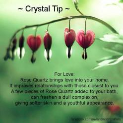 ✯ Crystal Tip: For Love .. From Owl And Moon Crafters ✯: Spiritual Healing Crystals, Rose Quartz, Crystals Minerals Gemstones, Roses, Healing Crystals Stones, Crystal Healing, Minerals Gems Crystals