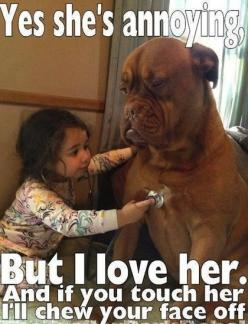 Favorite place?  Curled up with my Bess.  This mastiff looks so much like my baby.  I miss her!: Animals, Dogs, Stuff, Pets, Funny, Things, Friend, Doctor, Kid