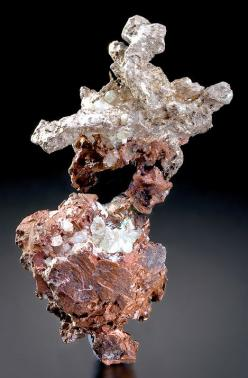 Fine halfbreed featuring Native Silver crystals atop larger crystals of Native Copper! The bright white and lustrous Silver crystals sit side by side atop the Copper, terminating outwards in different directions. The large Copper crystal at the bottom is