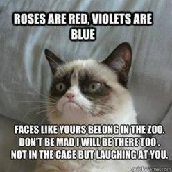 Grumpy Cat's Valentine! @Christina Childress Childress Childress Wickingson  @Hollie Baker A L E Y |  V A N  |  L I E W Rasmussen: Funny Quote, Quotes, Stuff, Grumpycat, Humor, Romantic Poem, Funny Grumpy Cats, Animal