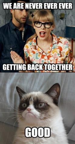 hahaha, but really though. It might be the worst and most annoying song ever.: Cats, Taylor Swift, Grumpycat, Funny Stuff, Humor, Funnies, Grumpy Cat