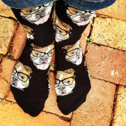 Move over Kittenster, there's a new hipster in town!  Crew length sock with bulldogs rocking some glasses. Available in Black or Seaglass.  Fits women's shoe size 5-10.: Fit Women, Bulldogs Rocking, Crazy Animals, Shoe Size, Woman Shoes, Fits Wome